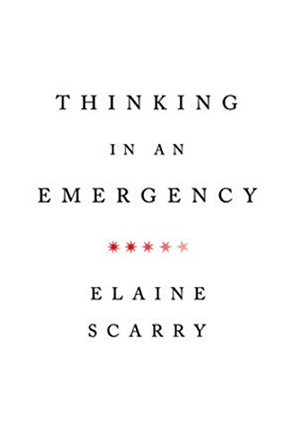 Image for Thinking in an Emergency (Norton Global Ethics Series)