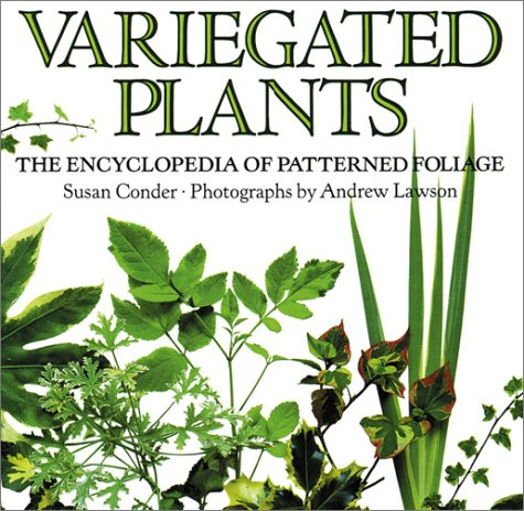 Image for Variegated Plants: The Encyclopedia of Patterned Foliage