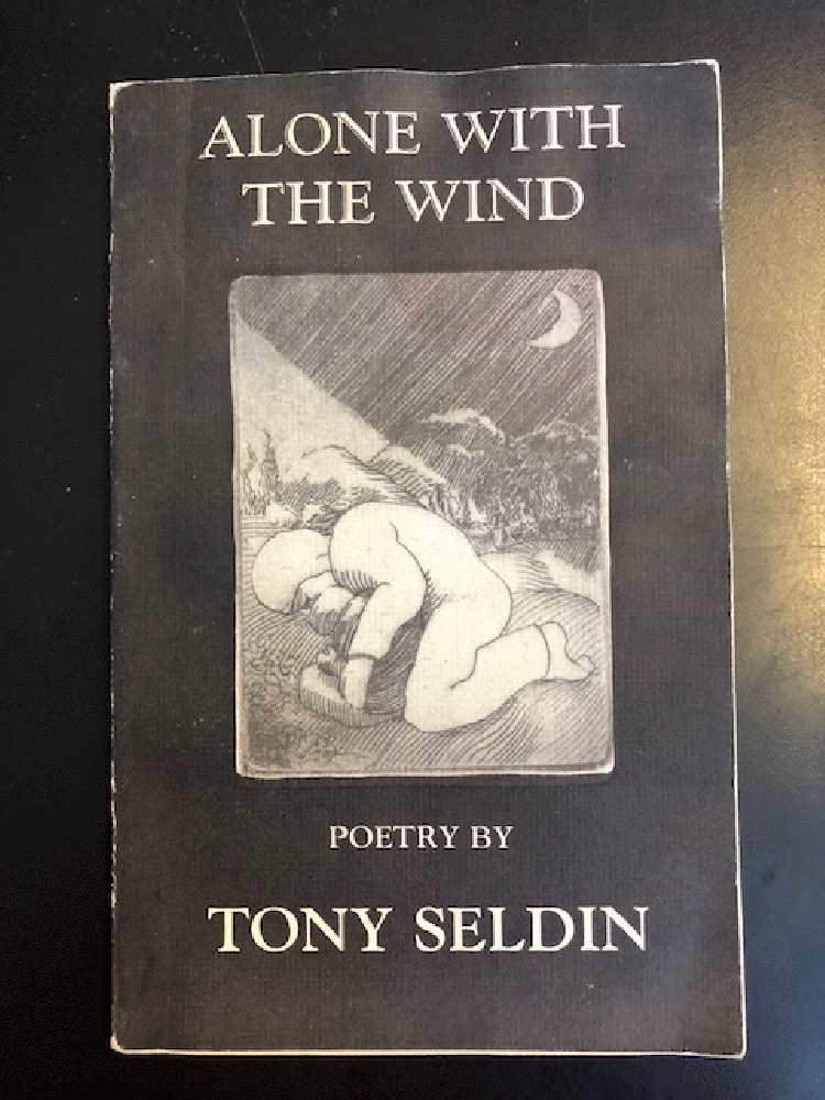 Image for Alone with the Wind