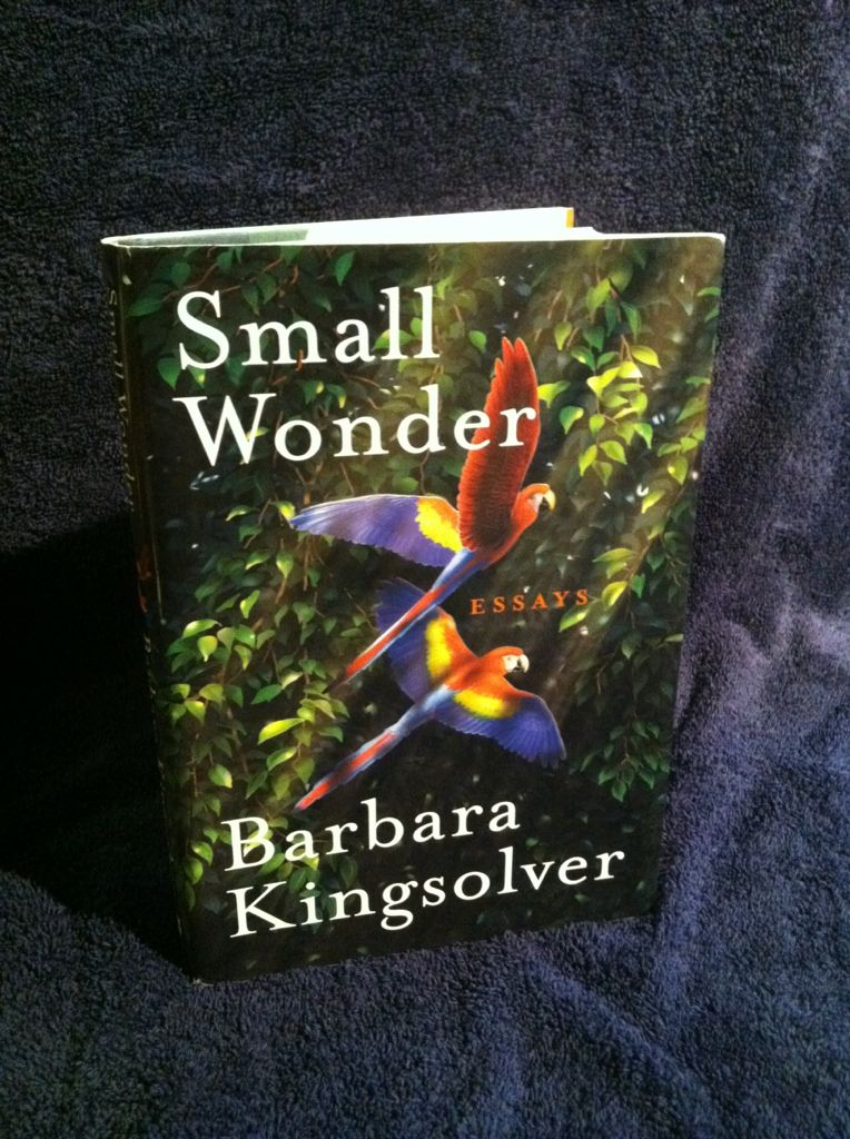 Image for Small Wonder: Essays