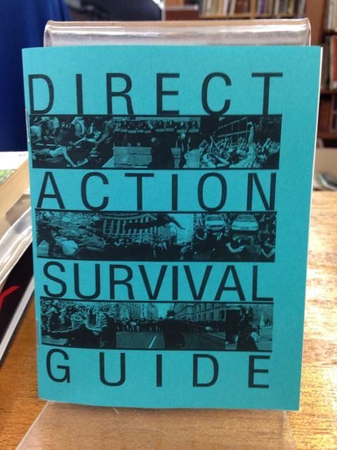 Image for Direct Action Survival Guide by Scott Weinstein