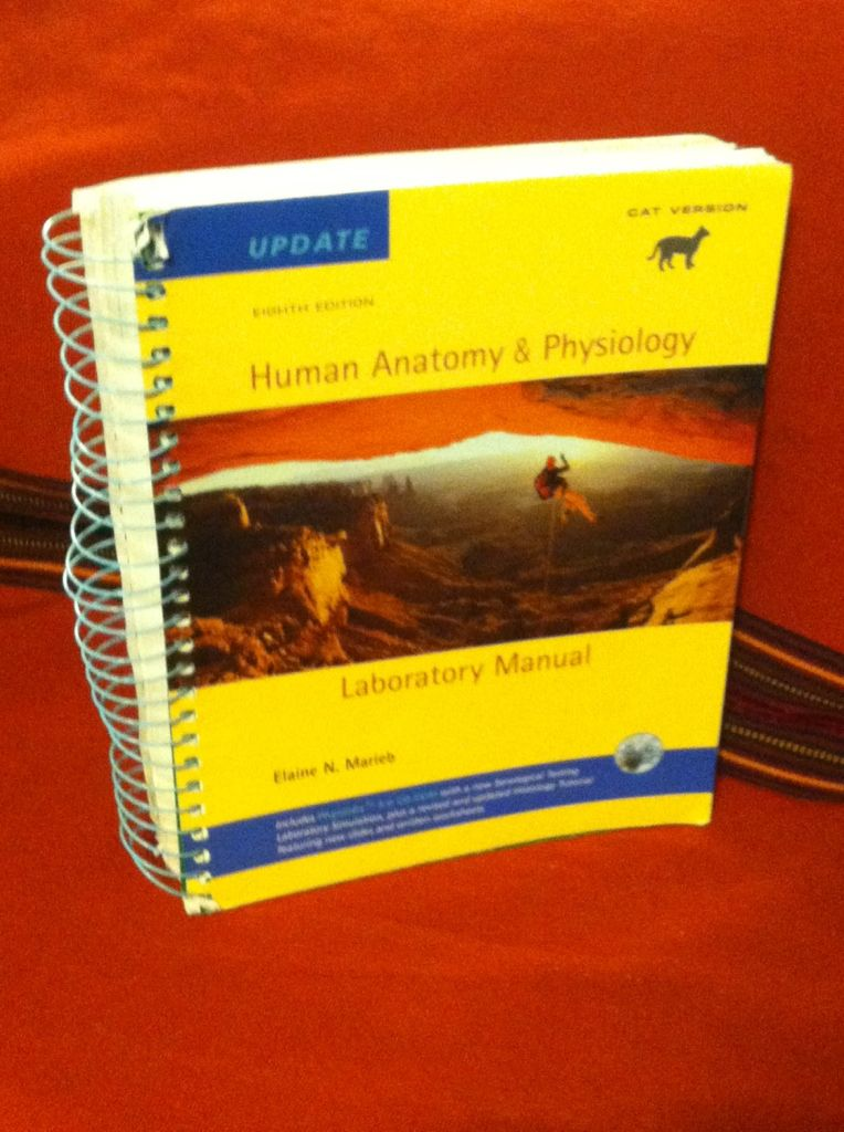 Image for Human Anatomy & Physiology Laboratory Manual