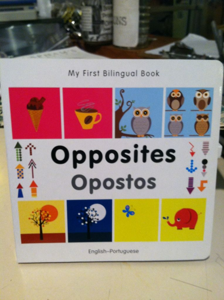 Image for My First Bilingual Book?Opposites (English?Portuguese)